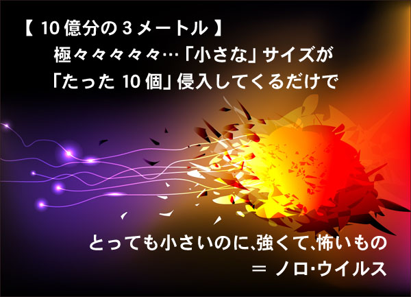 ノロウイルス対策 札幌 外食ビジネス専門家 有限会社ファインド 太田耕平
