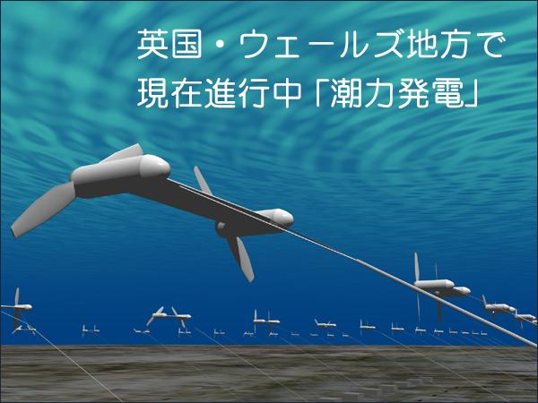 潮力発電ウェールズ フードビジネス 専門家 研究所 ファインド 札幌 太田耕平