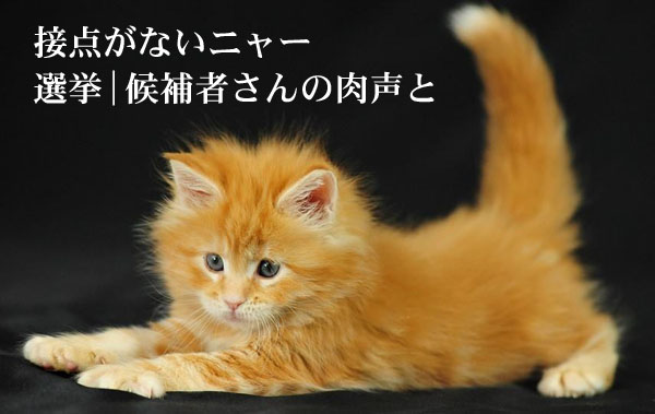 候補者さんと接点がない フードビジネス専門家 ファインド 札幌 太田耕平