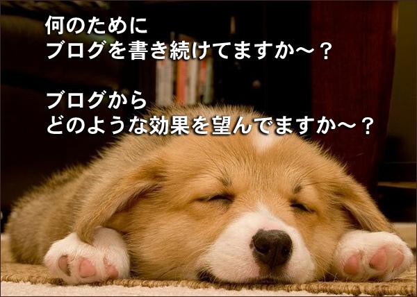 何のためにブログを書き続けてますか フードビジネス 専門家 研究所 ファインド 札幌 太田耕平