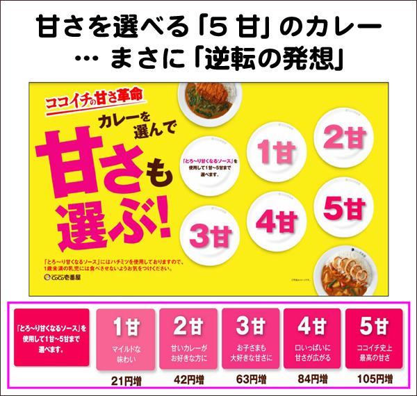 5甘のカレー フードビジネス 専門家 研究所 ファインド 札幌 太田耕平
