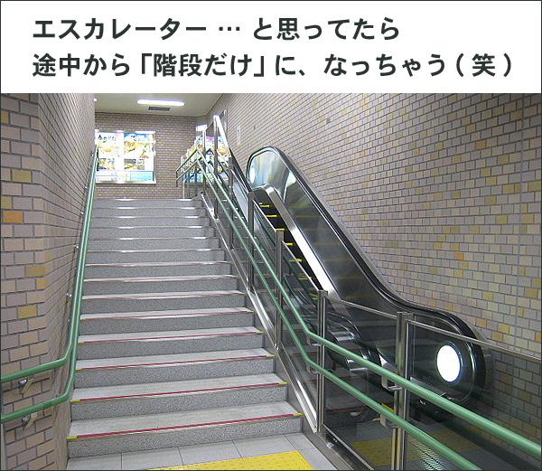 エスカレーター途中から階段だけ フードビジネス 専門家 研究所 ファインド 札幌 太田耕平