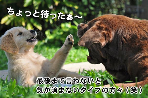 ちょっと待ったぁ フードビジネス 専門家 研究所 ファインド 札幌 太田耕平
