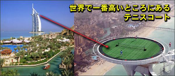 世界で一番高い場所テニスコート フードビジネス 専門家 研究所 ファインド 札幌 太田耕平