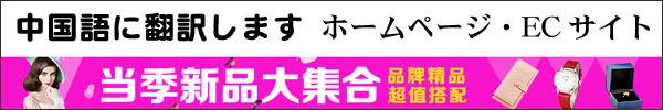 中国語 翻訳 ホームページ ショッピングサイト ECサイト 安い 札幌