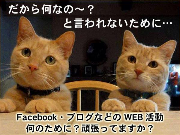 食ビジネス 専門家 研究所 ファインド 札幌 太田耕平 ブログ 口コミ クチコミ